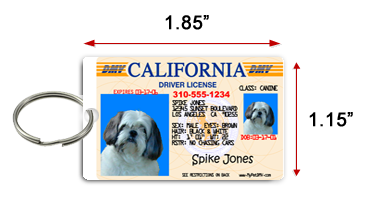 pet id tag sizes mypetdmv pet driver s license and id for all 50