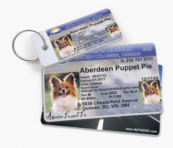 Canada Pet Driver's License Tags - MyPetDMV