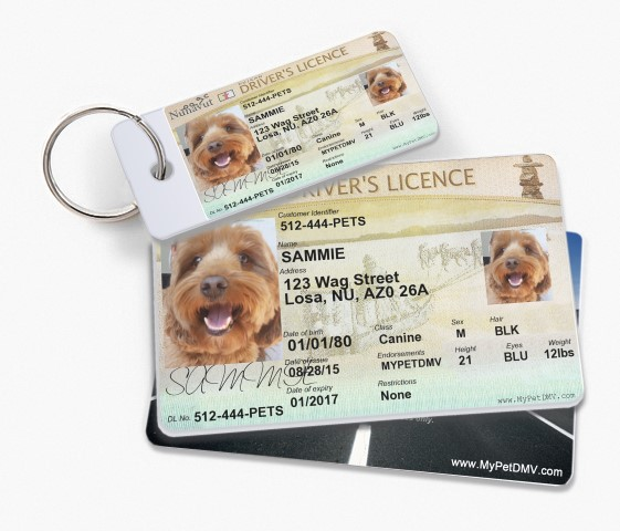 Canada Pet Driver S License Tags Mypetdmv Pet Driver S