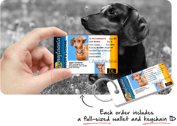 MyPetDMV - Official Pet Driver's License Tag for all 50 States