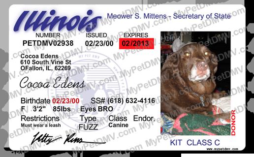 Pet Pet Pet Illinois Id Illinois License Id License License Illinois Id Illinois