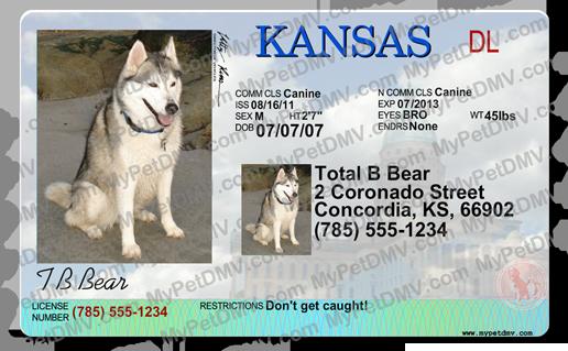 Kansas Pet Id License