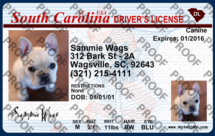 License Id Carolina South Pet